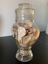 Seashell glass jar