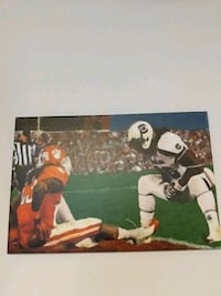 Gamecocks - Tigers Rivalry Painting Newport News, 23608