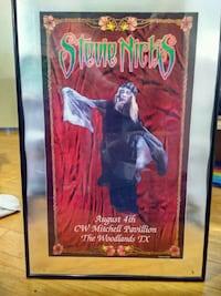 Collectible framed Stevie Nicks poster