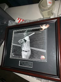 Ted Williams photo - framed Severn, 21144