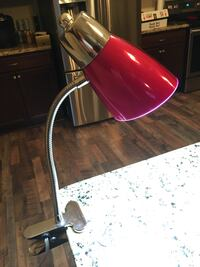 Pink desk lamp Johnstown, 43031