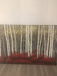 """47"""" x 35"""". Purchased at Pier 1 Imports for $350 Toronto, M3H"""