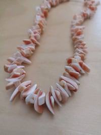 Coral shell necklace NEW