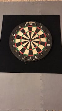"18"" Dartboard East Meadow, 11554"