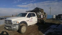 Garbage & Tree & Stumps Removal & Bobcat Services Calgary