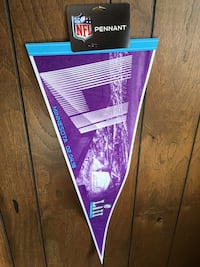 Super Bowl LIII NFL Pennant Minneapolis, 55423