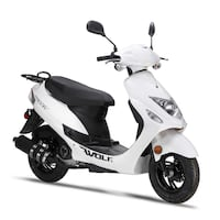 WOLF SCOOTER RX- 49 CC 2019