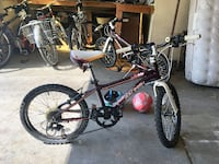 2 Raleigh Lily 20 Kid's Bikes Fort Collins