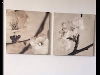 """2 Set of printed pictures made by high Quality Canvas 22.5"""" X 22.5"""". Excellent Conditions like brand new 502 km"""