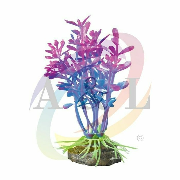 Brand New Fish Tank Plants 4in