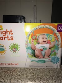 Baby's fisher-price bouncy chair Toronto, M6N 1Y5