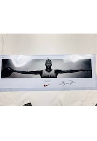 Michael Jordan signed wing photo