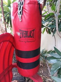 red and black Everlast heavy bag Torrance, 90503