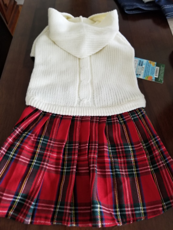 Back to school dress for dogs