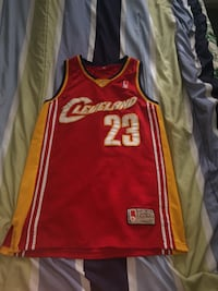 LeBron James jeresy New Westminster, V3M 4M1