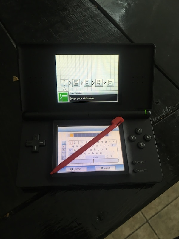 Used Nintendo Ds Lite With Case And Charger For Sale In Jacksonville