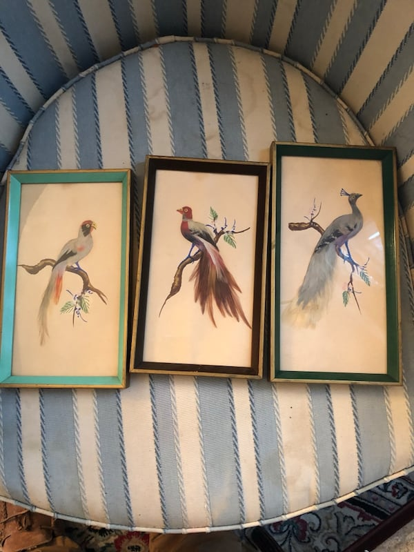 Bird paintings with real feathers  52728346-6742-4708-9023-27c806a21c3c