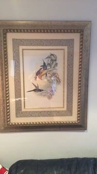 Beautiful Gold Frame with print of Humming Birds in Flight! New York, 10309