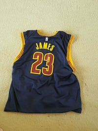 LeBron James Cavs Jersey Woodbine, 21797