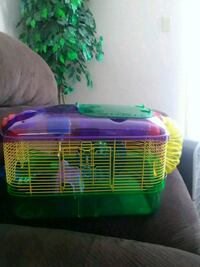 green and purple pet cage 111 km