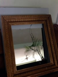 Huge Antique Mirror Frame and Glass Saint Charles, 63304