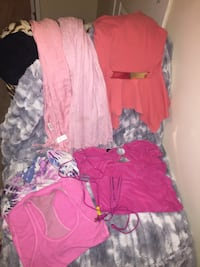 5 pink tops, mini straightener 2 scarves and one tote bag  Winnipeg, R3A 0K1