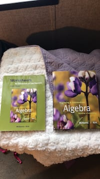algebra book and worksheets null