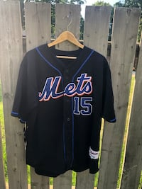 Carlos Delgado Marlins Jersey #25 Majestic Authentic MLB Size 42/M Whitchurch-Stouffville, L4A 1G6