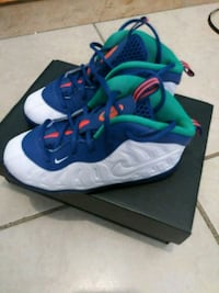 pair of blue-and-white Nike basketball shoes Apopka, 32703