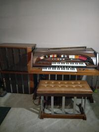 Apollo organ