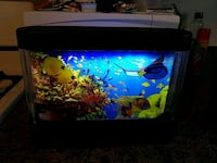 Discovery kids fish tank moving like new cond Toms River, 08753