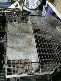 6 hole rabbit transport cage Rochester, 14620