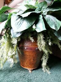 green potted artificial plant Houston, 77031
