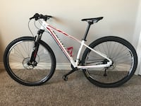 White and red hardtail mountain bike