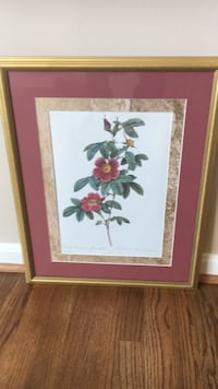 pink and white petaled flower painting