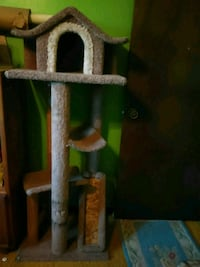 brown and green cat tree Littleton, 80128