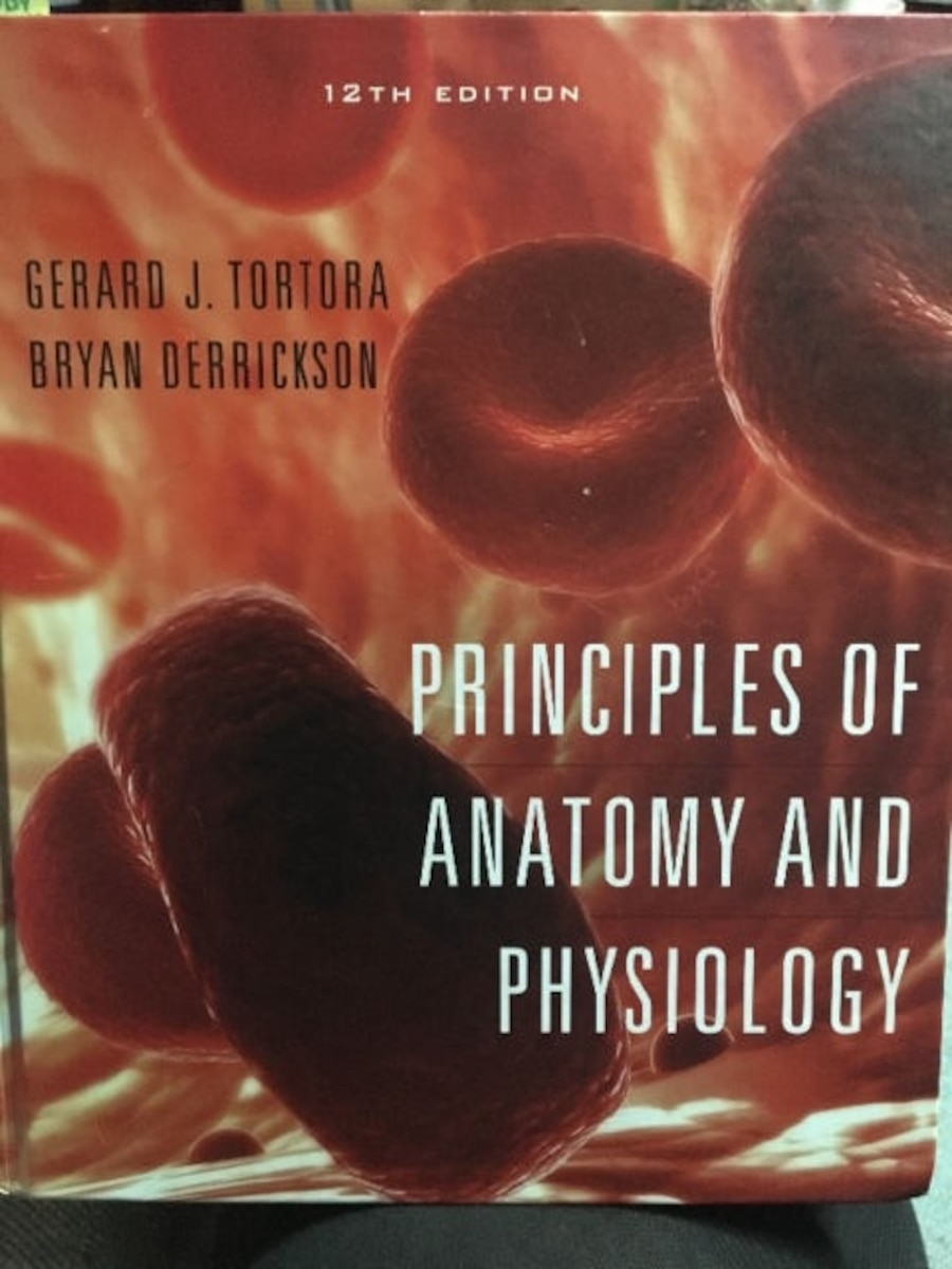 Colorful Anatomy And Physiology Tortora 13th Edition Quizzes Photos ...