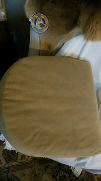 Chair cushion 1 only  Barrie, L4M 5S6