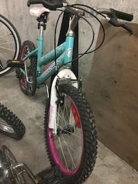 Fly Girl Mountain Bike Vancouver, V5P 2S7
