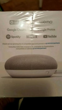 Google Chrome Smart Speaker Toronto