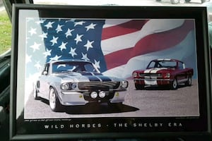 Light up Shelby mustangs picture
