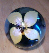 Beautiful Flower In Glass from Off The Wall Gallery Beachwood, 08722