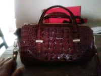 Authentic Brahmin small