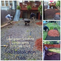 lawn services - sod STERLING