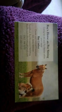 Offering Pet sitting Services