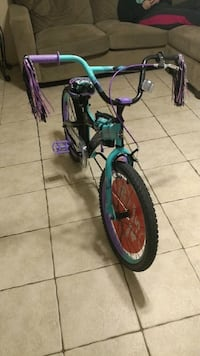 Bicycle  New Port Richey, 34653