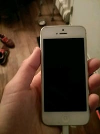 Unlocked iPhone 5 comes with charger and earbuds