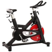 Sunny Health and Fitness Evolution Pro Magnetic Belt Drive Indoor Cycling Bike Vaughan