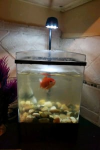 SMALL FISH TANK FOR SALE Barrie, L4N 1E6