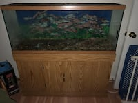 55 gallon aquarium with storage cabinet and outlets Woodbridge, 22191